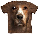Youth: Welsh Springer Spaniel T-shirts