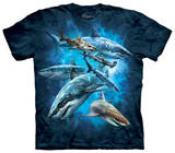 Youth: Shark Collage T-Shirts