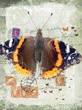 Papillon IV Giclee Print by Ken Hurd