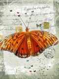 Papillon V Giclee Print by Ken Hurd