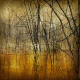 Waterlands Giclee Print by Irene Suchocki