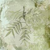 Forest Green II Giclee Print by Ken Hurd