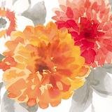Peach Flower II Giclée-tryk af Sandra Jacobs
