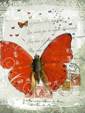 Papillon I Giclee Print by Ken Hurd