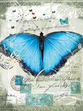 Papillon III Giclee Print by Ken Hurd