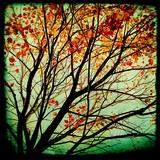 Autumn Alchemy I Giclee Print by Irene Suchocki