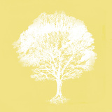 Dream Tree I Giclee Print by Ken Hurd