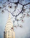 Architectural Spring I Giclee Print by Irene Suchocki