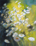 Marguerites dans un Champs Giclee Print by Genevieve Dolle