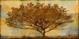 Autumn Radiance Sepia Giclee Print by Mark Chandon