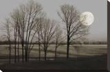 November Moon Trykk på strukket lerret av Heather Jacks