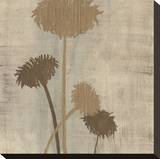 Linen II Stretched Canvas Print by  Maja