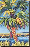 Pine Island Palm Stretched Canvas Print by Sally Evans