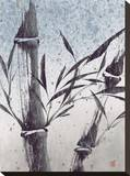 Cool Bamboo I Stretched Canvas Print by Katsumi Sugita