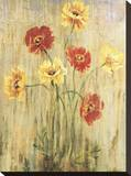 Poppy Serenade Stretched Canvas Print by Elizabeth Jardine