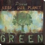 Grüner Planet Leinwand von Wani Pasion