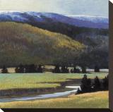 Foothills in Late Spring Stretched Canvas Print by Sandy Wadlington
