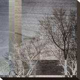 Night Falls Stretched Canvas Print by W. Blake