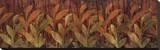 Coral Fields Stretched Canvas Print by Elizabeth Jardine