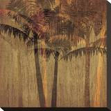 Sunset Palms II Stretched Canvas Print by  Amori