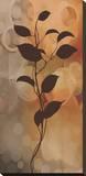 Flora II Stretched Canvas Print by Edward Aparicio