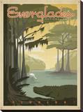 Parque Nacional de Everglades Impressão em tela esticada por  Anderson Design Group