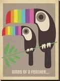 Rainbow Toucans Impressão em tela esticada por  Anderson Design Group