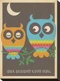Rainbow Owls Impressão em tela esticada por  Anderson Design Group