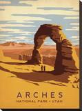 Arches National Park, Utah Impressão em tela esticada por  Anderson Design Group