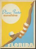 Dive Into Sunshine: Florida キャンバスプリント :  Anderson Design Group