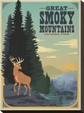 Parque Nacional das Great Smoky Mountains Impressão em tela esticada por  Anderson Design Group