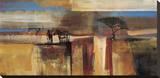 Etosha Zebra Stretched Canvas Print by Frances Schandera
