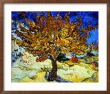 Mulberry Tree, ca. 1889 Indrammet giclee-tryk af Vincent van Gogh