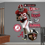 NCAA/NFLPA Eddie Lacy Alabama Crimson Tide 2013 Wall Decal Sticker Wall Decal