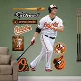 Baltimore Orioles Chris Davis Wall Decal Sticker Wall Decal