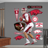 NCAA Tyler Wilson Arkansas Razorbacks 2013 Wall Decal Sticker Wall Decal
