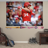 Washington Nationals Bryce Harper Mural Decal Sticker Wall Decal