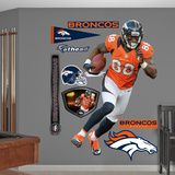 NFL Denver Broncos Demaryius Thomas Wall Decal Sticker Wall Decal