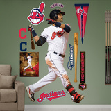Cleveland Indians Nick Swisher Wall Decal Sticker Wall Decal