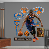 New York Knicks Raymond Felton Wall Decal Sticker Wall Decal