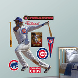 Chicago Cubs Starlin Castro Wall Decal Sticker Wall Decal
