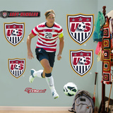 Soccer Abby Wambach Wall Decal Sticker Wall Decal