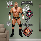 WWE Wrestling Triple H 2013 Wall Decal Sticker Wall Decal