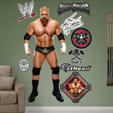 WWE Wrestling Triple H 2013 Wall Decal Sticker Wall Decal