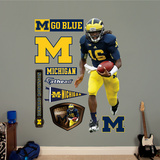 NCAA Denard Robinson Michigan Wolverines 2013 Wall Decal Sticker Wall Decal