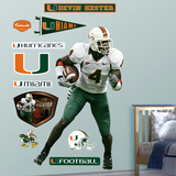 NCAA/NFLPA Miami Hurricanes Devin Hester Wall Decal Sticker Wall Decal