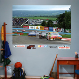 Watkins Glen Mural Decal Sticker Wall Decal