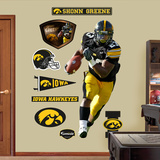 NCAA/NFLPA Iowa Hawkeyes Shonn Greene Wall Decal Sticker Wall Decal