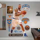 New York Knicks Tyson Chandler Wall Decal Sticker Wall Decal