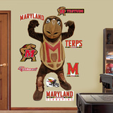 NCAA Maryland Terrapins Mascot - Testudo Wall Decal Sticker Wallstickers